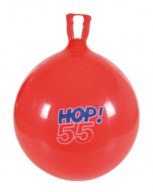 All-In Sport: <p>ROOD, DIAMETER: 55 CM</p> <p></p> <p>Wie komt met de springkussen bal in beweging, speelse oefeningen de spieren van de rug, b...