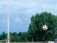 All-In Sport: van 5 mm perlon gevlochten, 12 meter lang, met draaiwartel-karabijnhaak en lus.