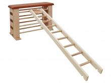 All-In Sport: De Kübler Sport Klimladder is een belangrijke accessoires voor het springkastensysteem Varianta. Gemaakt van massief espenhout en voorzie...