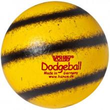 All-In Sport: <p>VOLLEY® DODGEBALL, Ø 16 CM, 105G<br />De Volley® Dodgeball is geschikt voor vele gelegenheden - voor alle werp- en schi...