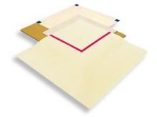 All-In Sport: Volgens internationale voorschriften: standaard kleur beige, wedstrijdvlak 13 x 13 m gemarkeerd door rode afgrenzingsband.  Velourstapijt...