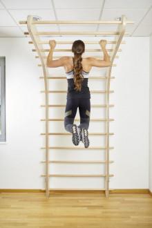 All-In Sport: <p>Nieuwe muur bars, geschikt voor gebruik in de sportschool, fysiotherapie of training in uw eigen huis.De speciale vorm biedt ontelbare...