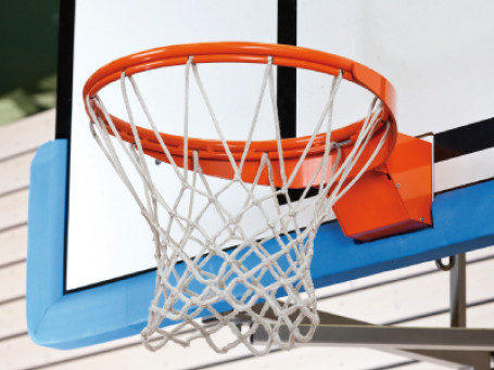 Basketbalring OFFICIAL excl. net