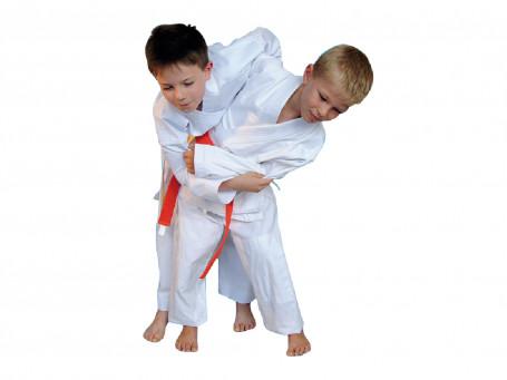 Judopakken BASIC