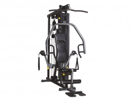Multi-Station HORIZON FITNESS TORUS 3