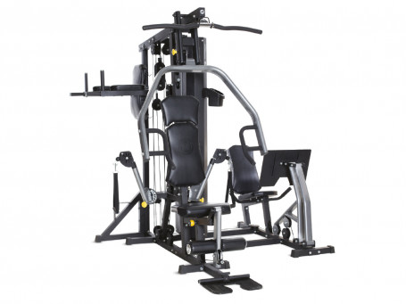 Multi-Station HORIZON FITNESS TORUS 5