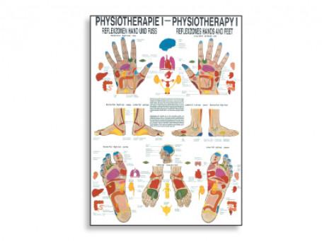 Reflexzones fysiotherapie-poster